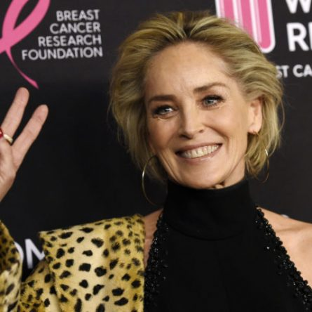 The real Sharon Stone blocked by bumble as an impersonator
